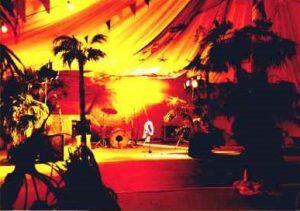 Caribbean Theme Party backdrop