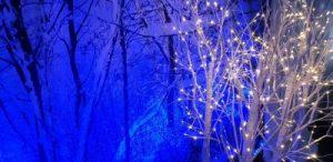 Winter Wonderland Christmas Theme.Winter Wonderland Theme Party Christmas Party Ace Tones