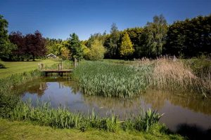 beautifully landscaped grounds at our Lincolnshire event venue